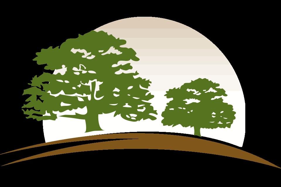 Logo17prcnt960x638